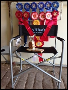 chair with ribbons